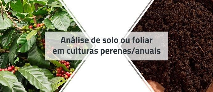Análise de solo ou de folha em culturas perenes/anuais